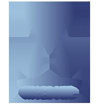 NiceBowl logo granat